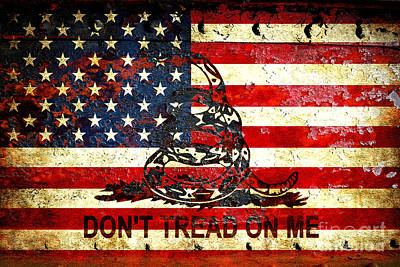 American Flag And Viper On Rusted Metal Door - Don't Tread On Me Art Print
