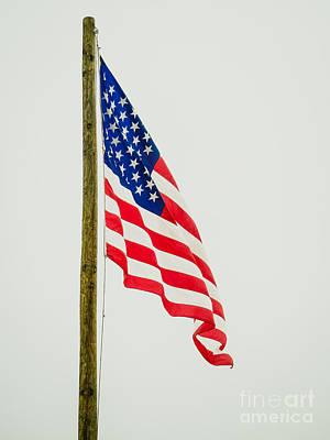 American Flag - B Art Print by Debra Martz