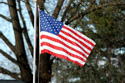 Photograph - American Flag by Jai Johnson