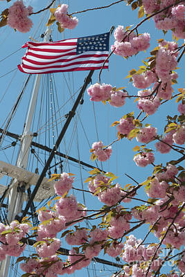 Photograph - American Flag With Cherry Blossoms by Carol Groenen