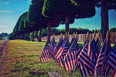 Photograph - American Flags Courtesy Of Amvets by Toni Hopper