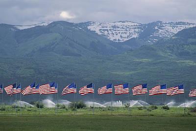 American Flags Honoring Veterans Art Print by James P. Blair