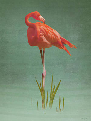 Digital Art - American Flamingo  by Spadecaller