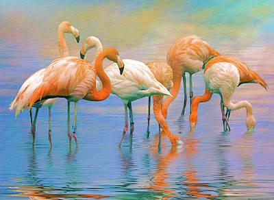 Photograph - American Flamingos by Brian Tarr