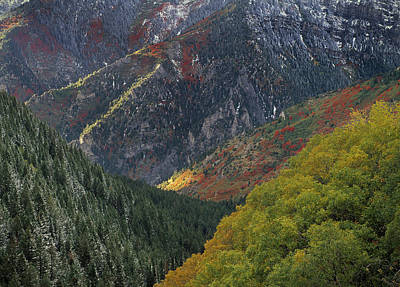 Photograph - American Fork Canyon by Leland D Howard