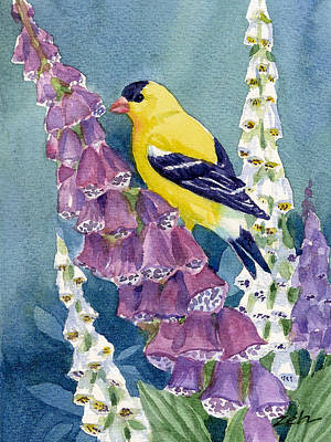 Painting - American Goldfinch And Foxgloves by Janet Zeh