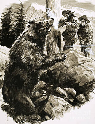 Brown Bear Painting - American Grizzly Bear Being Shot By Trappers by CL Doughty