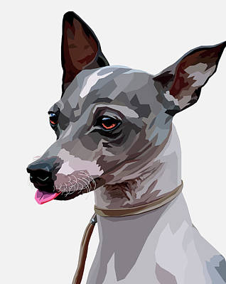 Terrier Digital Art - American Hairless Terrier  by Alexey Bazhan