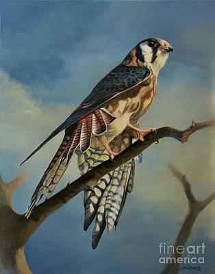 Kestrel Painting - American Kestrel by Jeanne Newton Schoborg