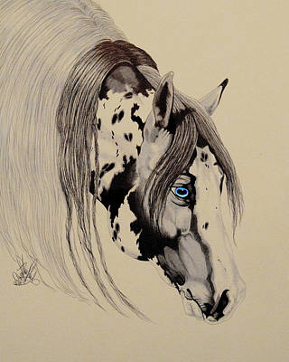 Drawing - American Paint Reining Horse by Cheryl Poland