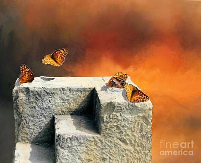 Photograph - American Painted Lady Butterfly by Janette Boyd