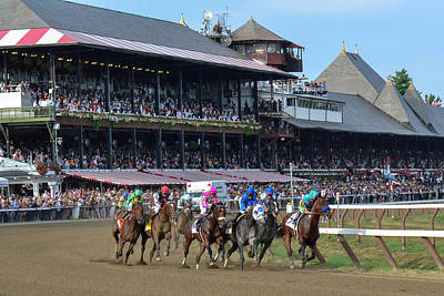 Animals Photos - American Pharoah at Saratoga Race Course by William Stephen