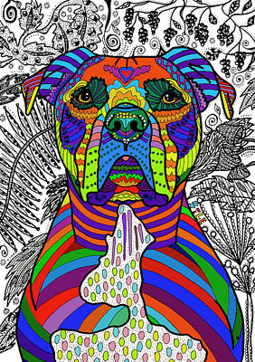 Drawing - American Pit Bull Terrier by ZileArt