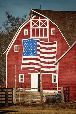 Photograph - American Pride by Susan Rissi Tregoning