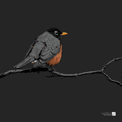 Digital Art - American Robin - Gray by Marcus England