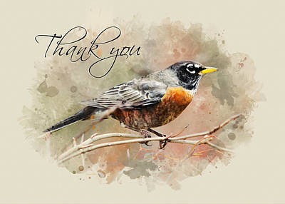 Mixed Media - American Robin Watercolor Thank You Card by Christina Rollo