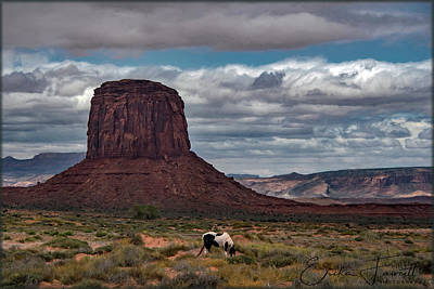 Photograph - American Southwest by Erika Fawcett