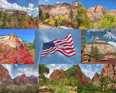 Photograph - American Splendor - Zion National Park by John M Bailey