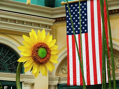 American Sunflower Print by Rae Tucker