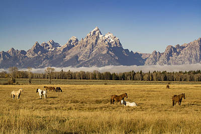 Jackson Hole Wall Art - Photograph - American West by Peter Irwindale