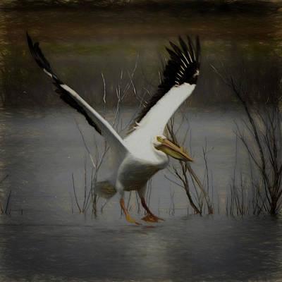 Digital Art - American White Pelican Da Square by Ernie Echols