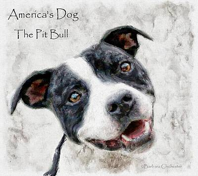 Dog Rescue Digital Art - America's Dog The Pit Bull by Barbara Chichester