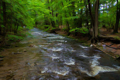 Photograph - Amethyst Brook 2 In Amherst Ma by Richard Goldman