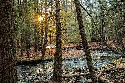 Photograph - Amethyst Brook, Amherst, Ma by Richard Goldman