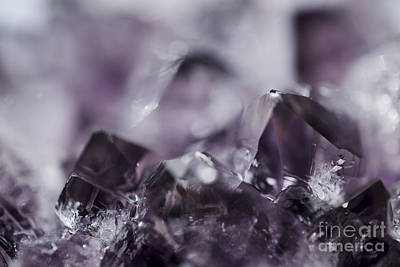 Photograph - Amethyst Jewel Tones by Sharon Mau
