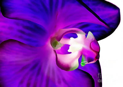 Amethyst Orchid Art Print by Krissy Katsimbras
