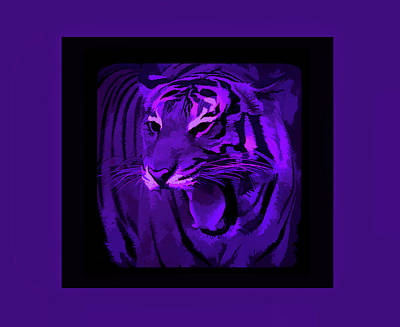 Photograph - Amethyst Portrait Of A Tiger by Aimee L Maher ALM GALLERY