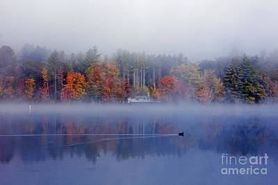Photograph - Amherst Lake Vt by Butch Lombardi