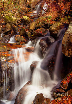 Country Photograph - Amicalola Falls by Andrew Glisson