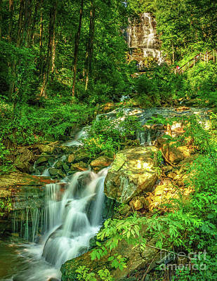 Photograph - Amicalola Falls Georgia by Nick Zelinsky