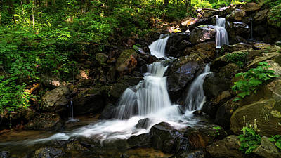 Photograph - Amicalola Waterfalls 2 Dawsonville Georgia by Lawrence S Richardson Jr
