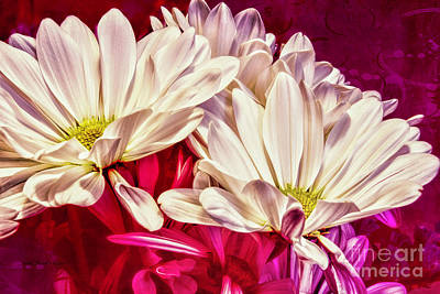 Photograph - Amid Passion by Jean OKeeffe Macro Abundance Art
