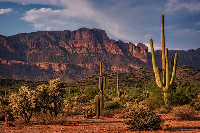 Photograph - Amidst The Superstitions  by Saija Lehtonen