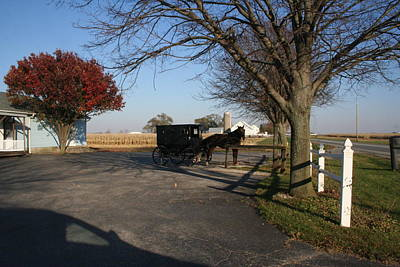Amish 4 Print by Eric Irion