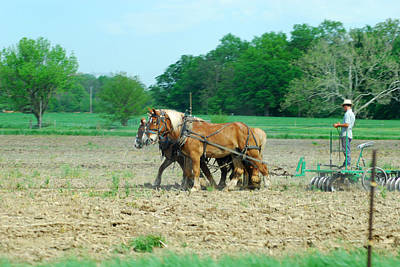 Photograph - Amish At Work by Wanda Jesfield