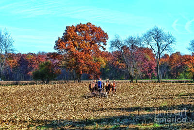 Photograph - Amish Boy Disking Field by David Arment