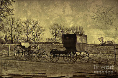 Photograph - Amish Bugges For Sale Near Shipshewana Antiuqed by David Arment