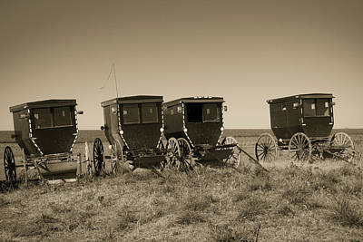 Photograph - Amish Buggies by Steven Bateson