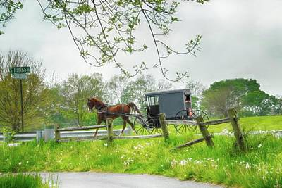 Photograph - Amish Buggy Along Ronks Road by Dyle Warren