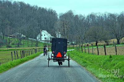 Photograph - Amish Buggy And Bike Riders by David Arment