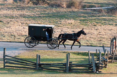 Amish Photograph - Amish Buggy And Split Rail Fence by David Arment