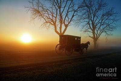 Photograph - Amish Buggy At Dawn by David Arment