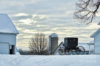 Vintage Pharmacy Royalty Free Images - Amish Buggy at Morning Royalty-Free Image by David Arment