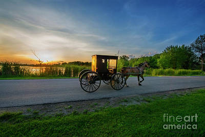 Photograph - Amish Buggy At Sundown Near The Lake by David Arment