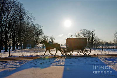Photograph - Amish Buggy Early Morning by David Arment