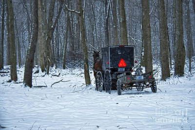 Amish Photograph - Amish Buggy In The Woods by David Arment